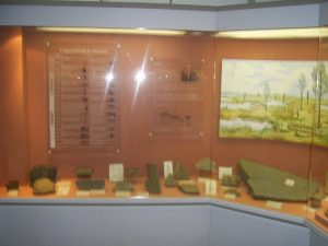 Über meine Mineralien/Fossiliensammlung,über Nettersheim,und vieles mehr